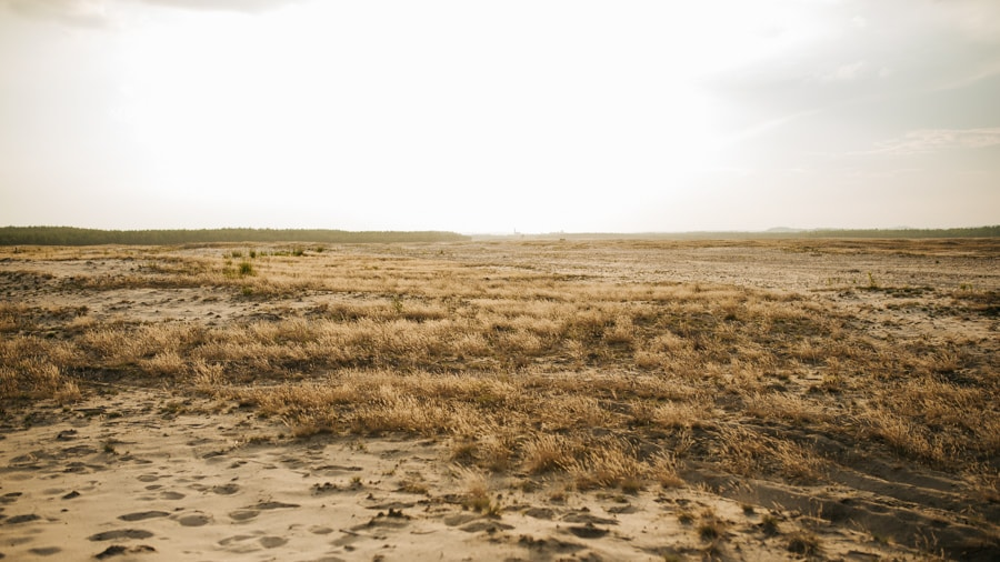 sesja boho na pustyni bledowskiej 46 of 72 3